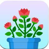 花藝趣 v1.0 紅包版