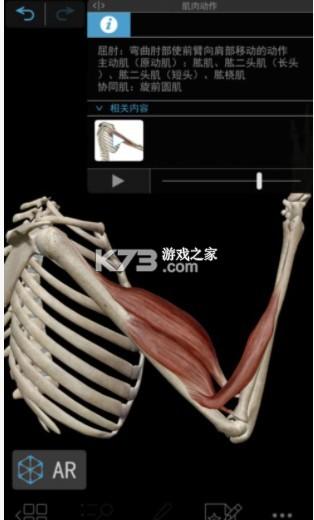 肌肉与运动机能学 v8.0.76 app 截图