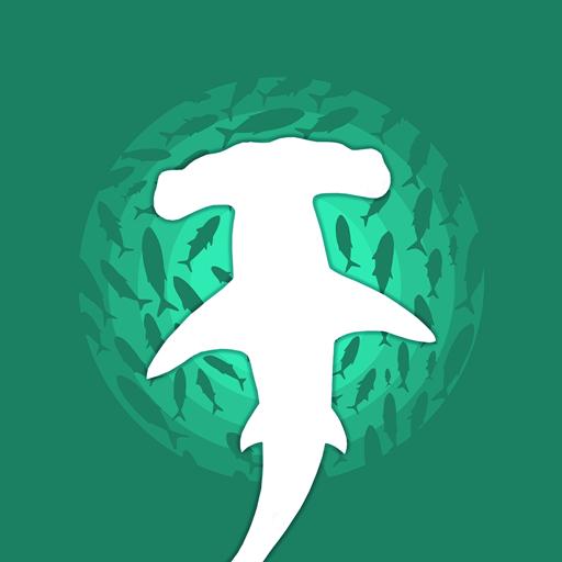 鲨鱼来了安卓版v1.0.1