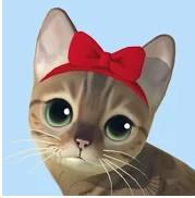 貓咪渡假村最新版