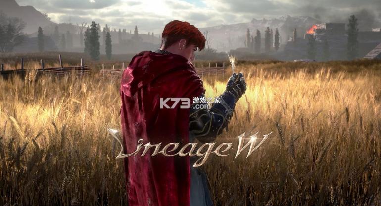 天堂w v1.0 韩服最新版 截图
